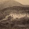 Archivo Fotográfico Forestal